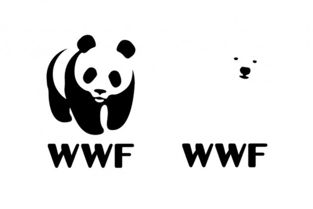 Rebranding okiem grafika