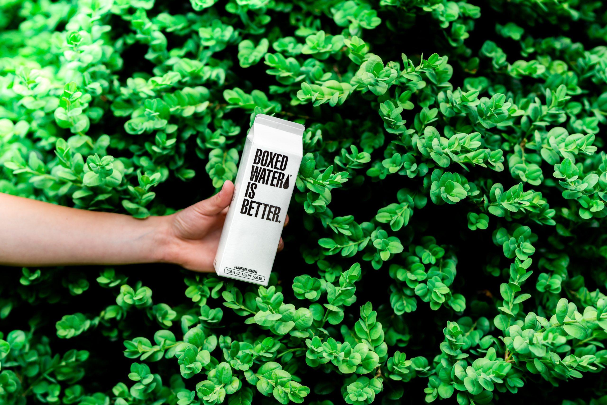 """Ręka trzymająca karton z napisem """"boxed water is better"""", z tyłu tło z zielonych liści"""