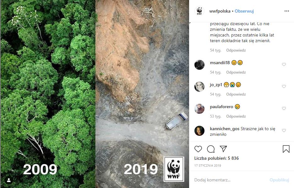 zdjęcie WWF przedstawiające las w 2009 i 2019